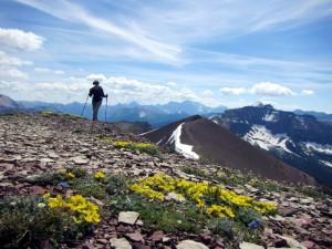 Gill arriving on another summit along Akamina Ridge