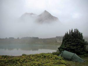 Fog at Devon Lakes